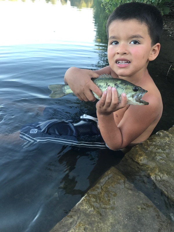 Maumee River And Lake Erie Report- August 3,2017