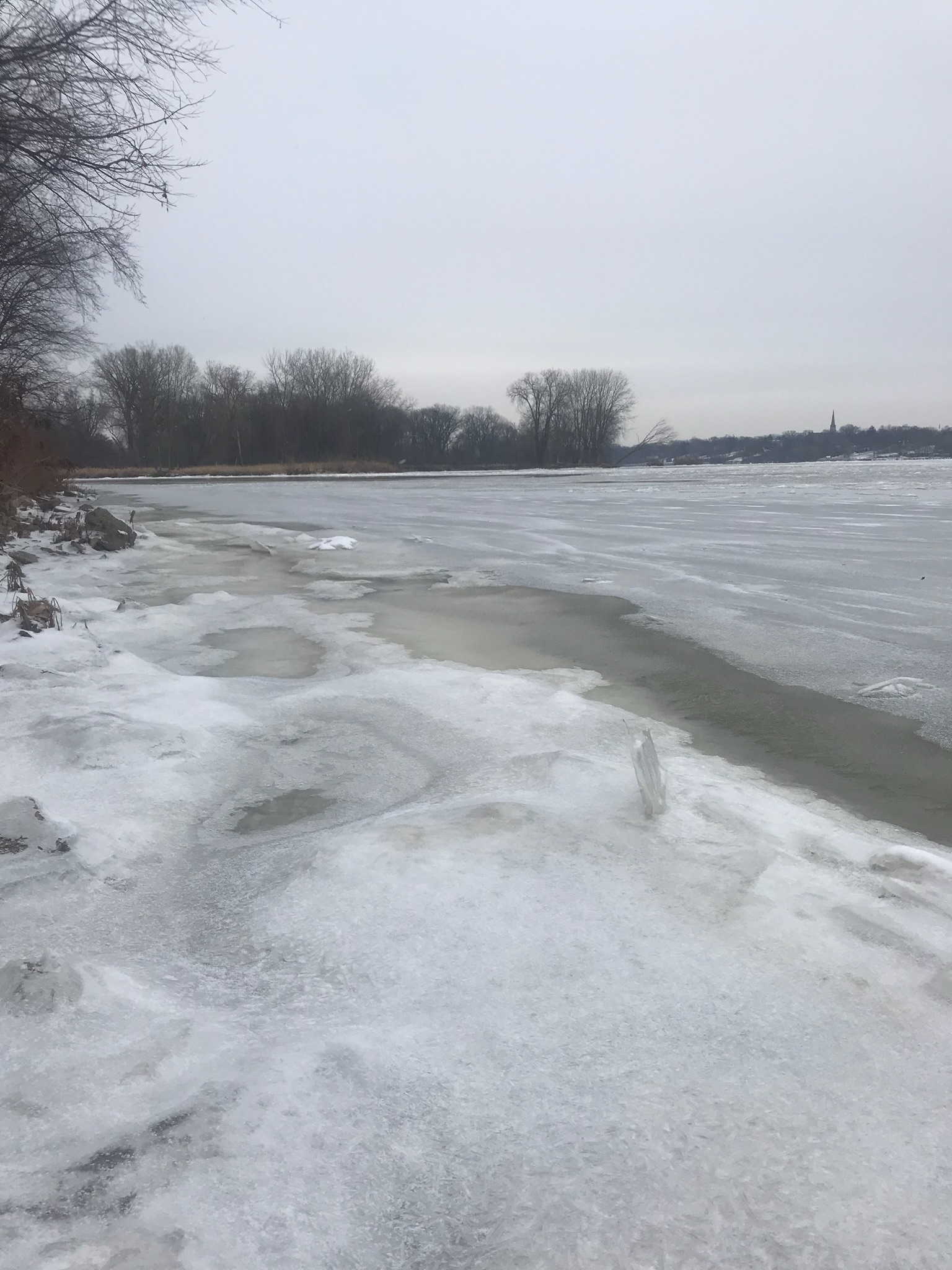 Maumee River and Lake Erie Report-December 13 2017