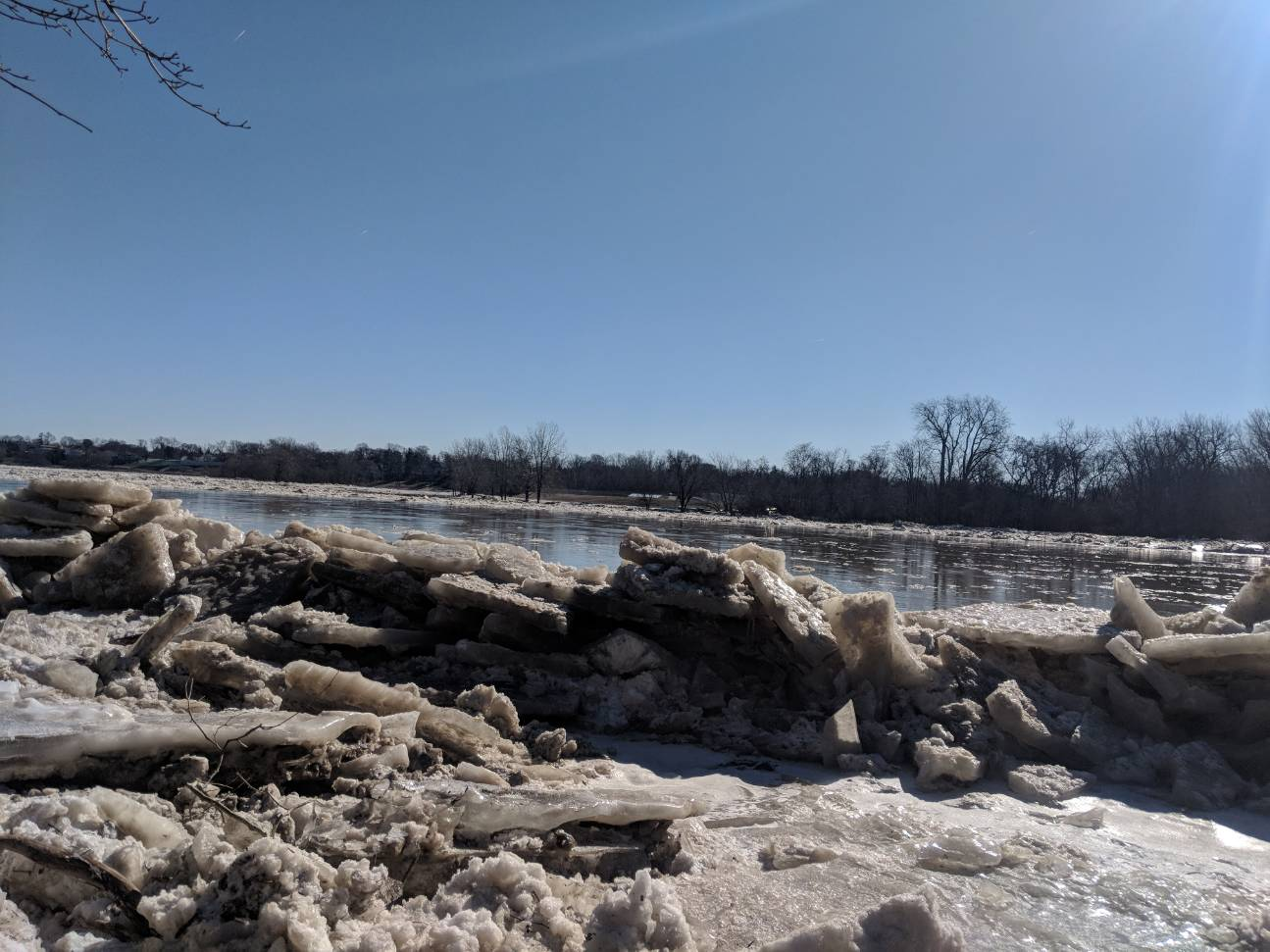 Maumee River Report- 8 Febuary 2019