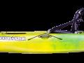 2019-Cruise-10-Macaw-1
