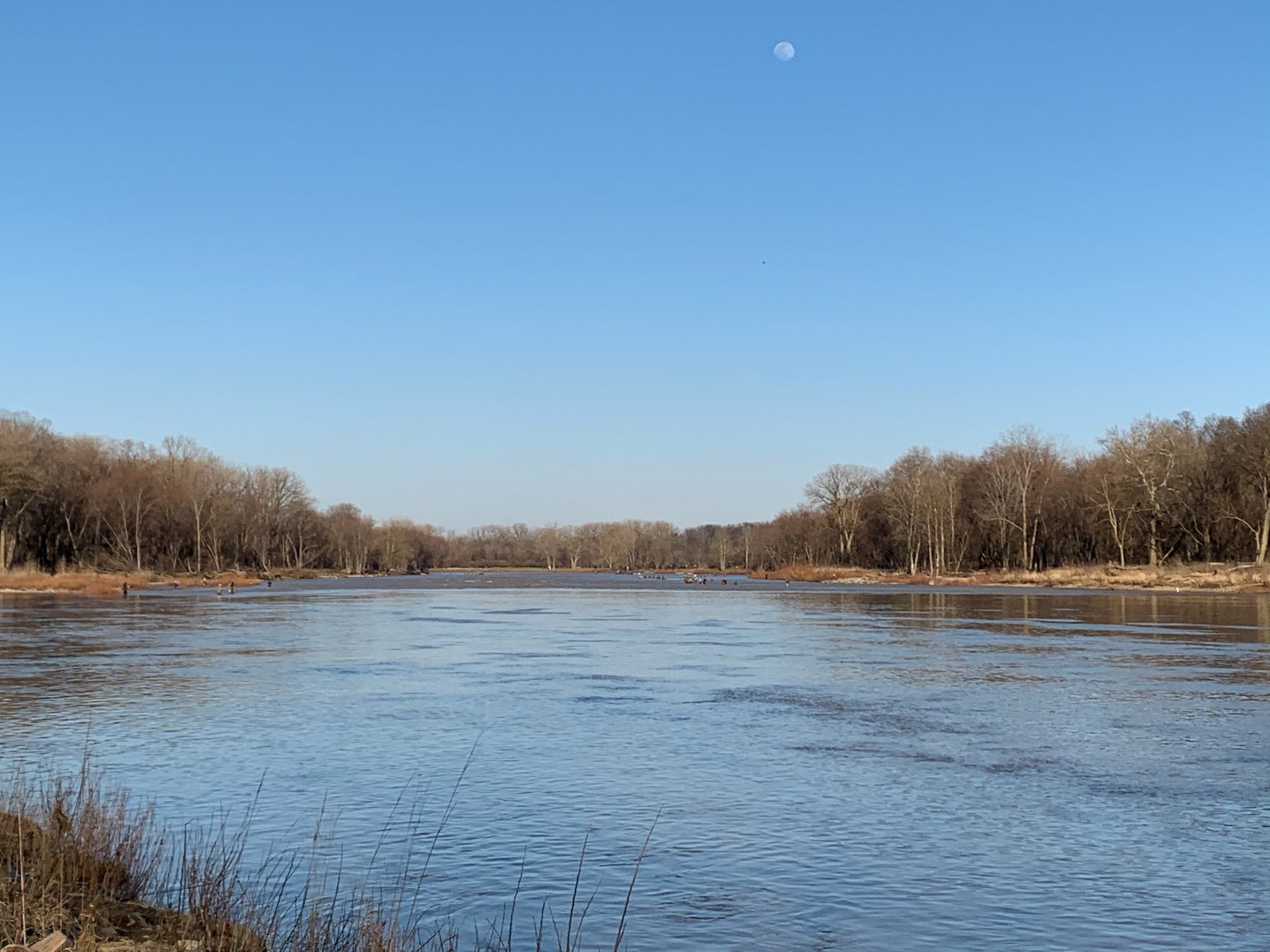 Maumee river fishing..6 April 20