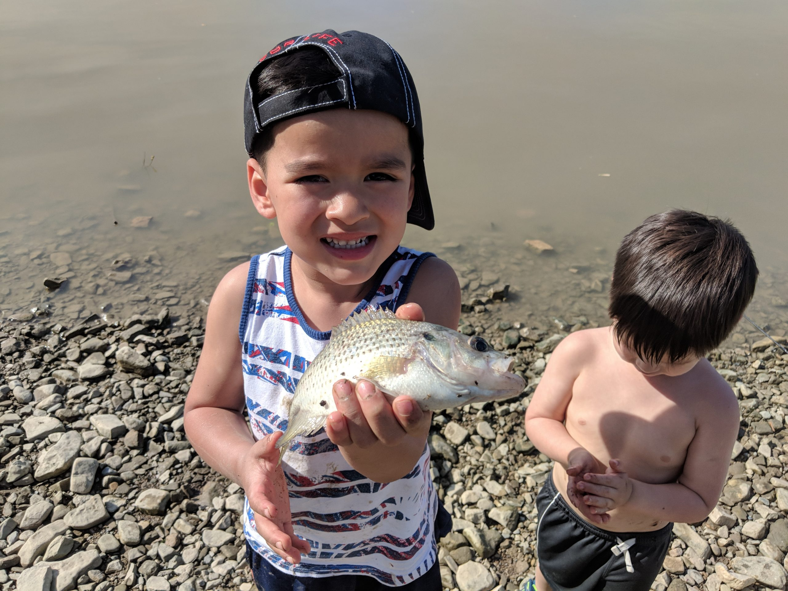 Maumee River Report- 24 May 18