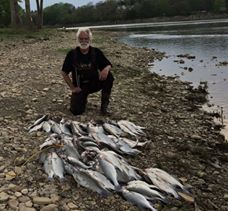 Maumee River Report- 24 May, 2019