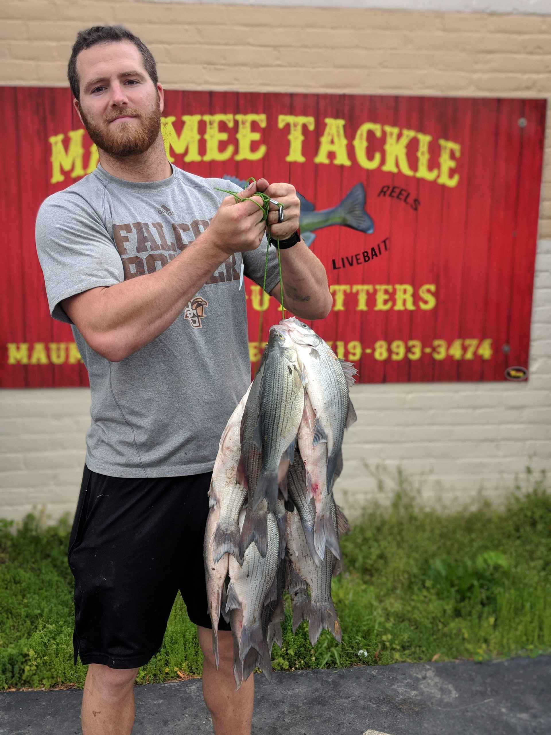 Maumee River Report- Shiners In Stock- May 25, 2019