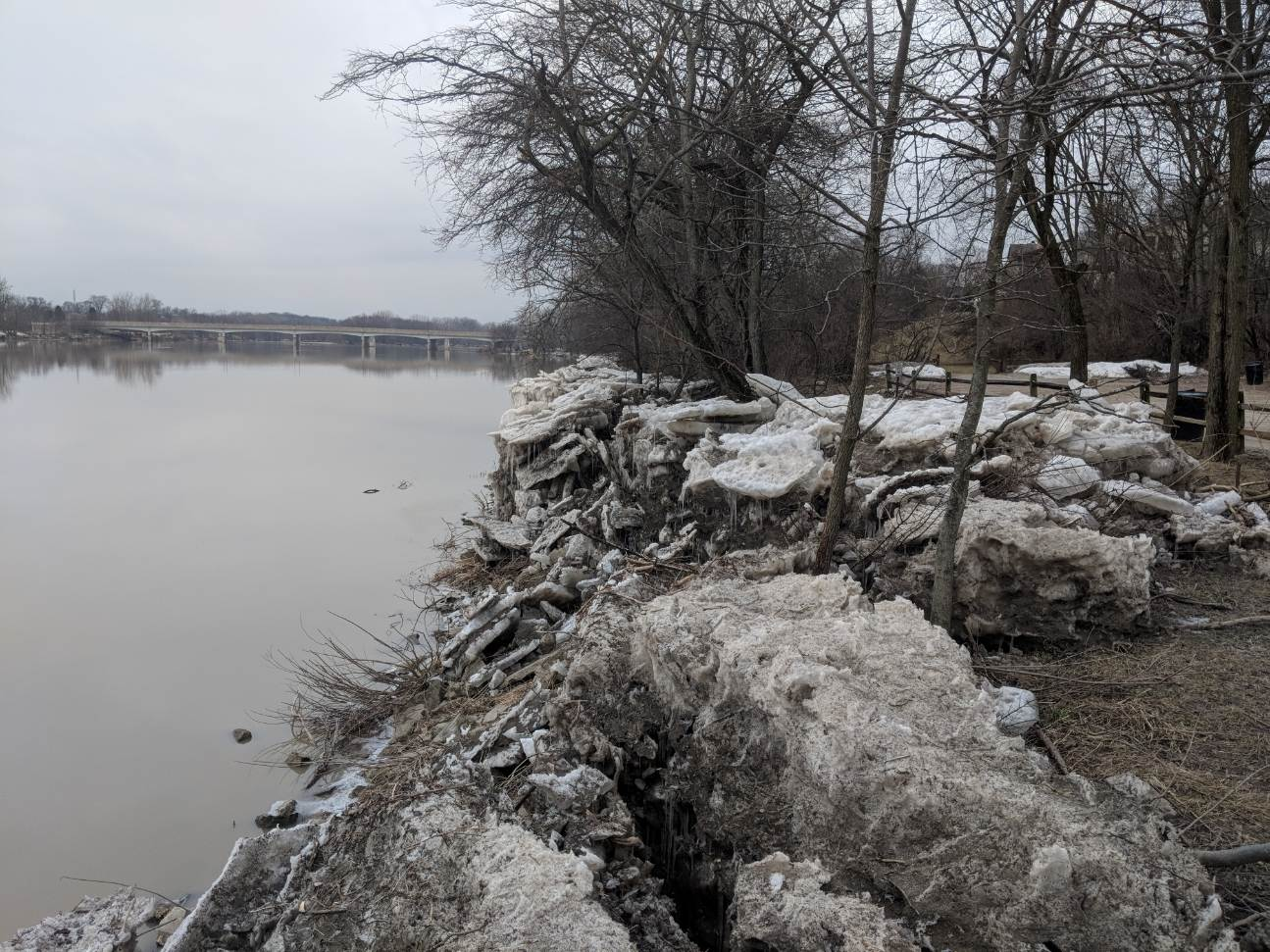 Maumee River Report , 4 March 2019