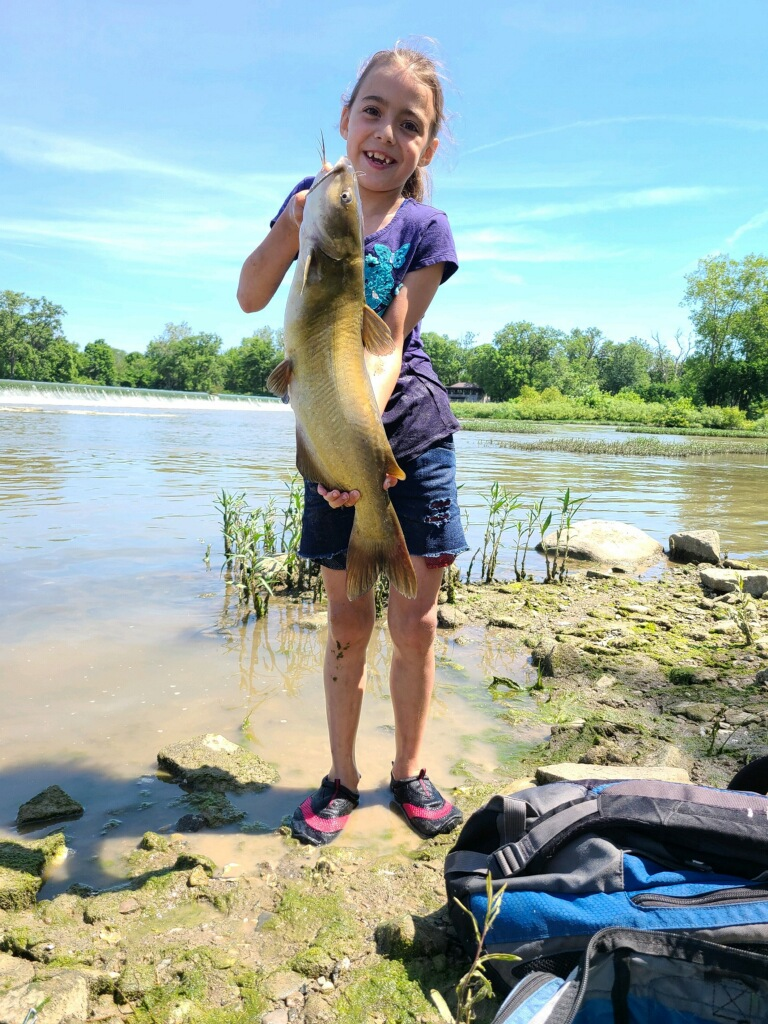 Maumee River report. 18 June 21- Looking at a great fathers day weekend.