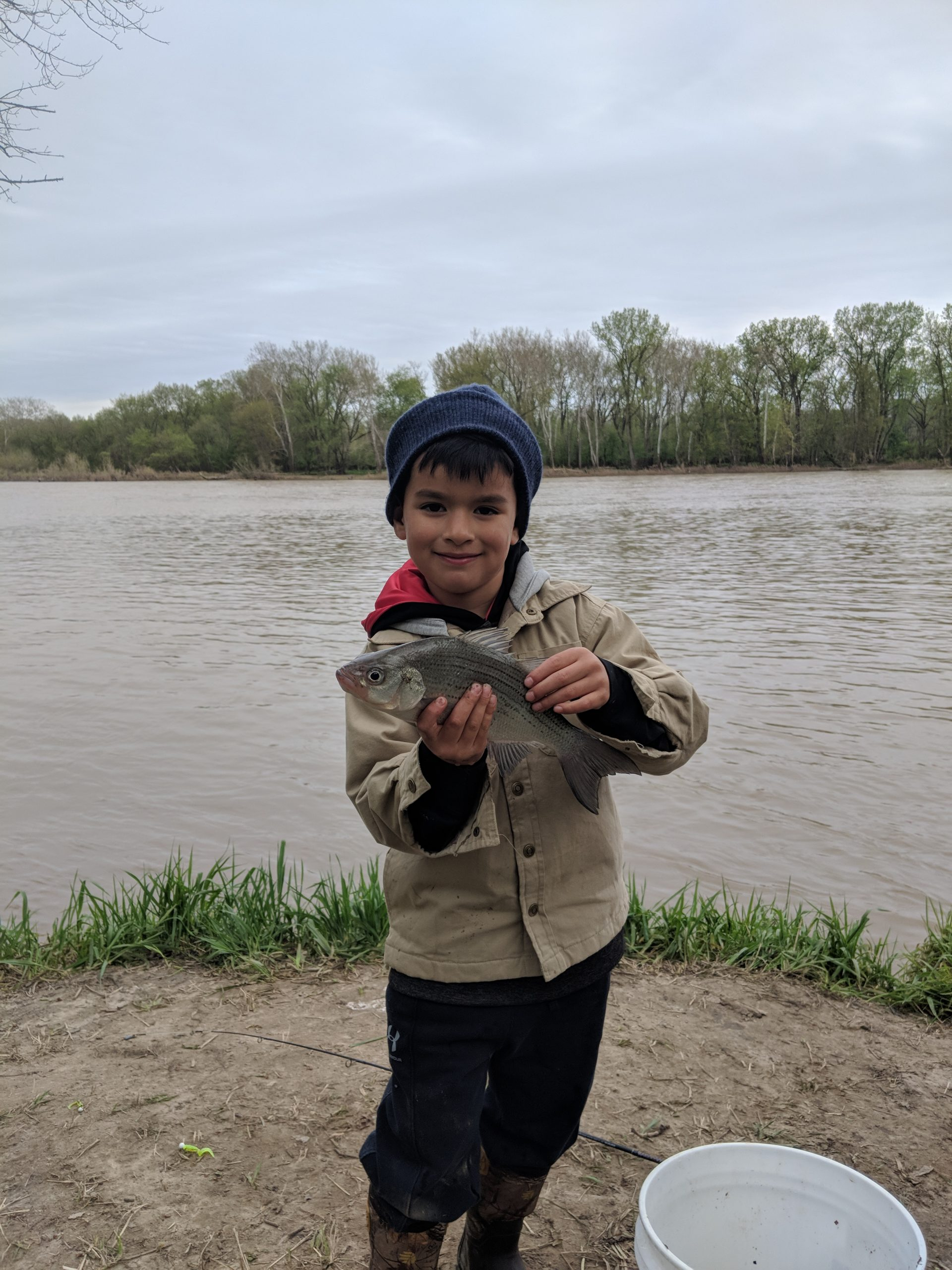 Maumee River Report- 8 May 2019