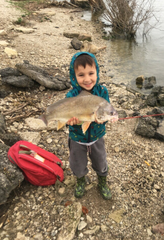 maumee river report-12 December 2020