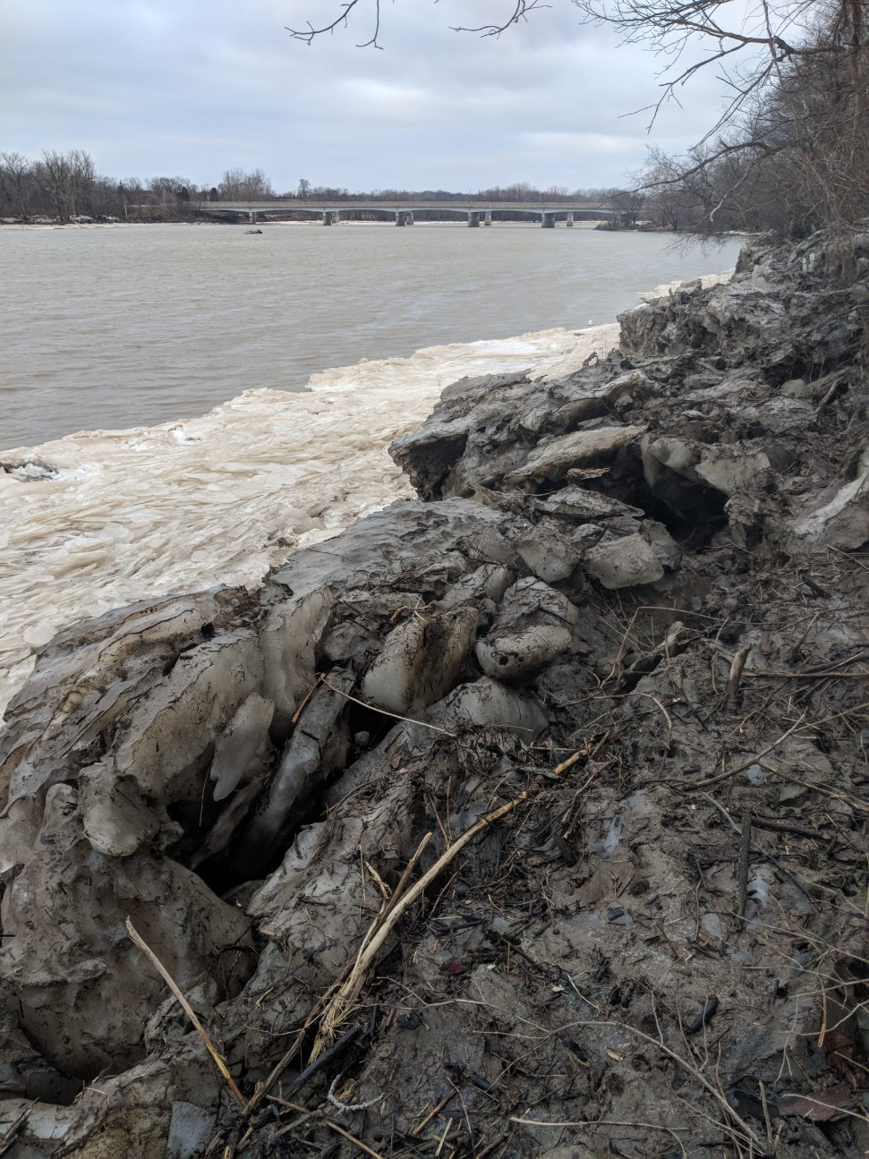 Maumee River Report- 11 March 2019