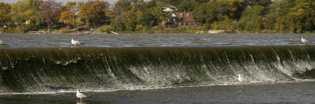 Maumee River Report – 31 May 2017