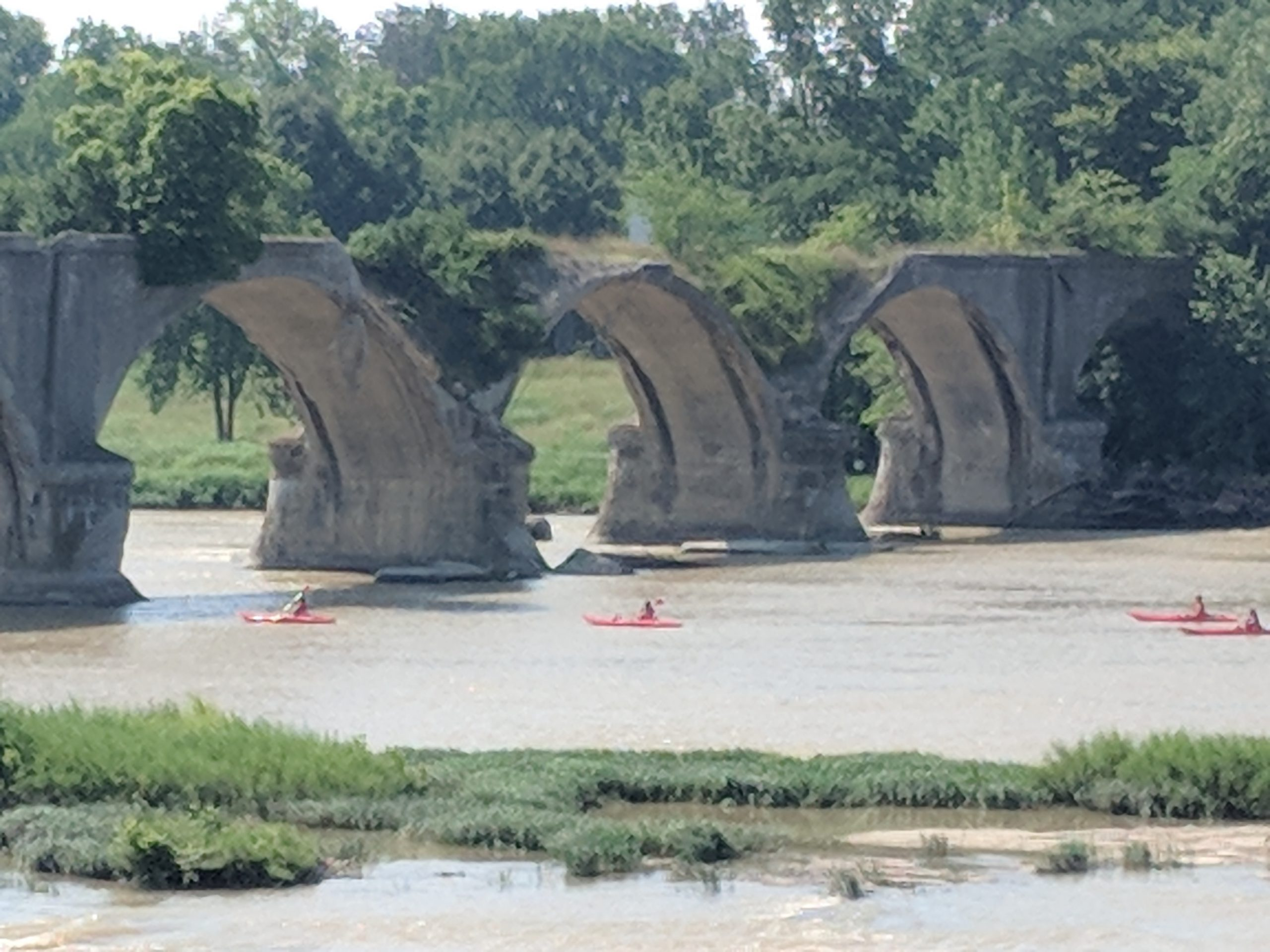 Maumee River Report-  29 July, 2019- Follow the Red Kayaks.